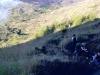 Monkey Mt Batur